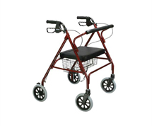 Walking Aids and Accessories